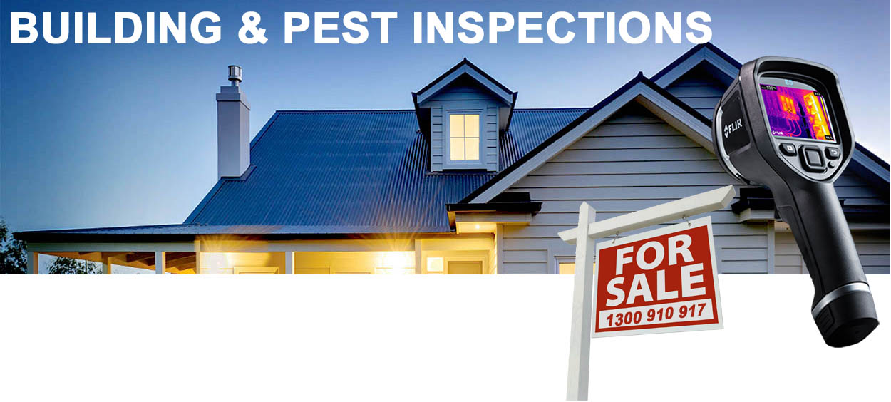 Building and pest inspection Ipswich