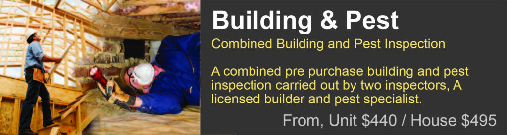 Pest and building report Caboolture