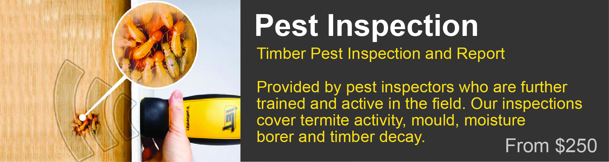 pest inspection Ocean Shores