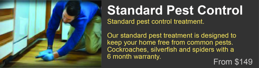 pest treatment Grafton