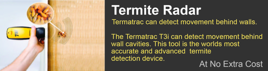 Termite radar Logan City