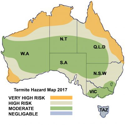 Termite Hazard Australia