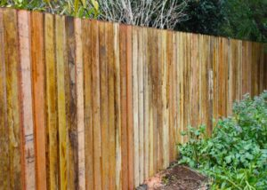 Termite Resistant Timbers | East Coast Building & Pest