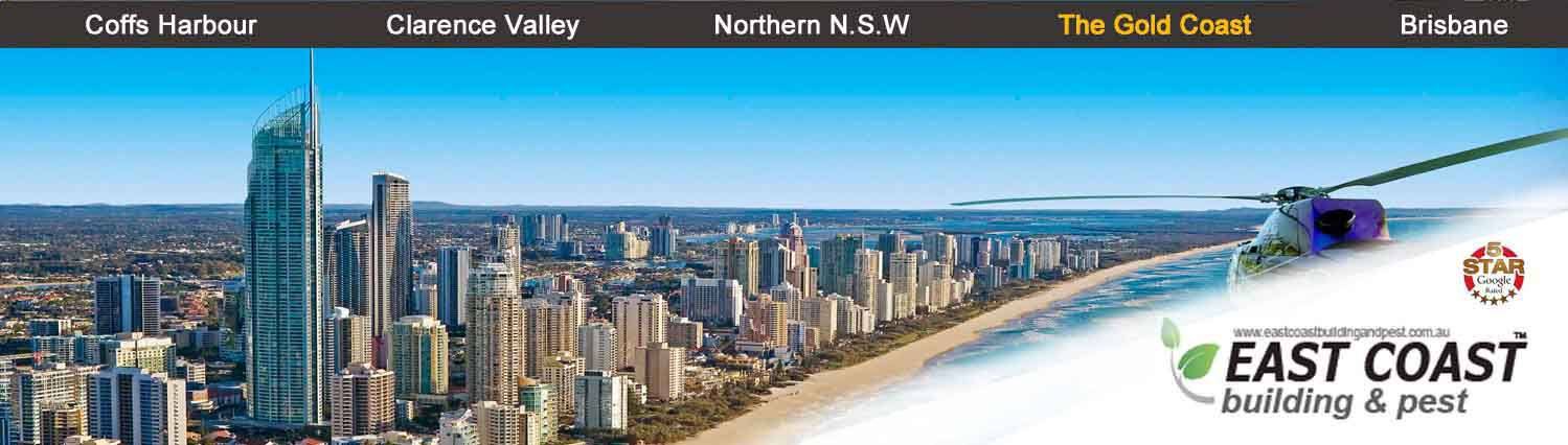 property report Gold Coast