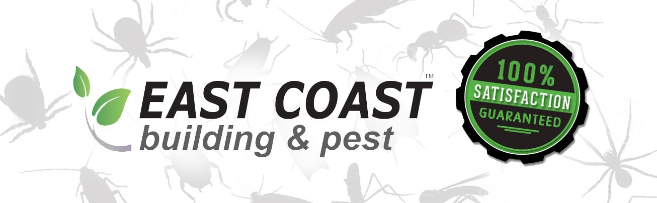 East coast building and pest headder