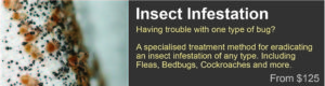 Insect Infestation Treatment